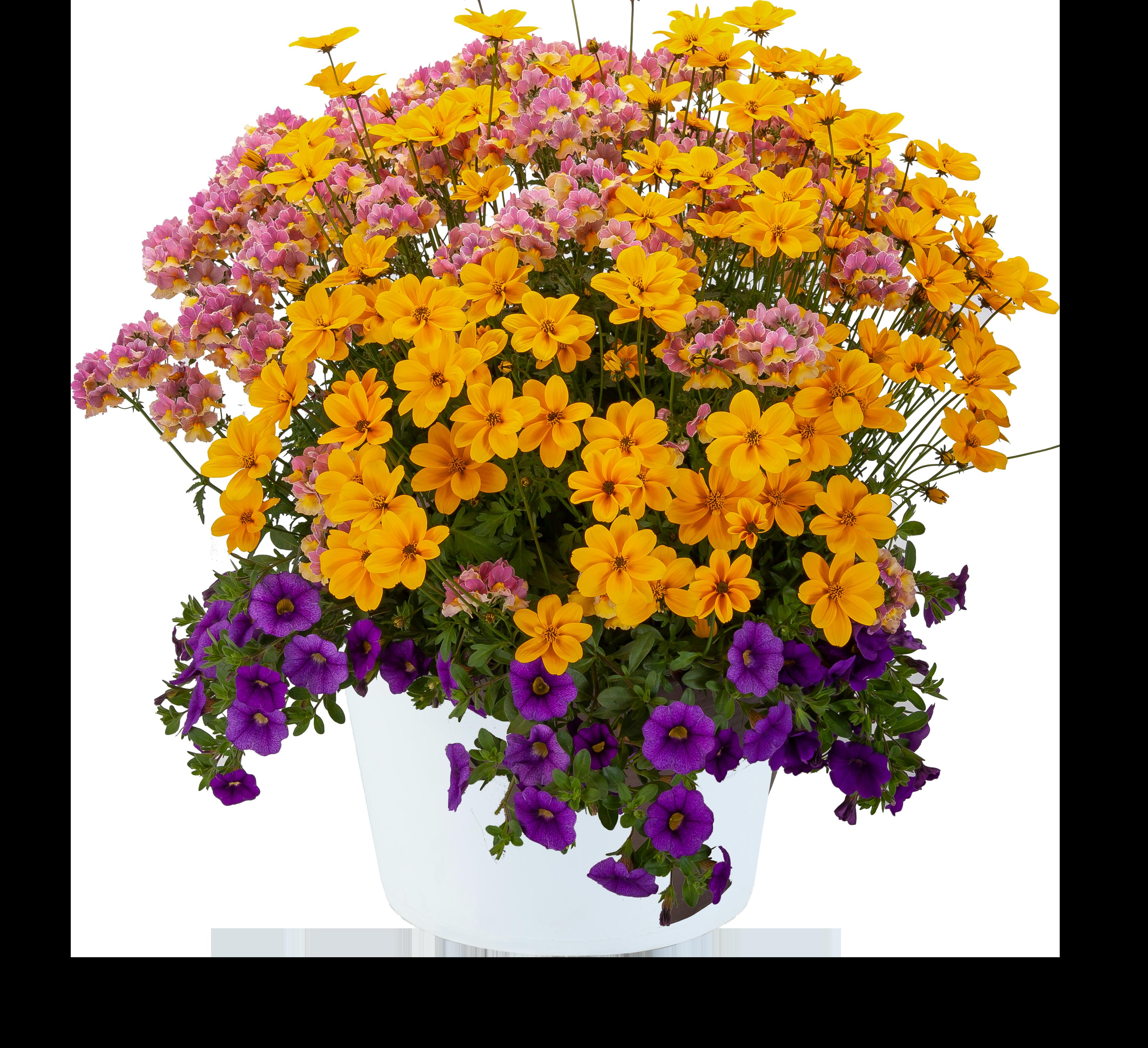 Birthday Bouquet™